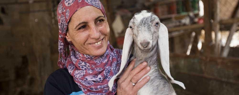 Kiva refugee