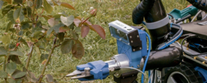 Scientists create gardening robot to help out with pruning and trimming