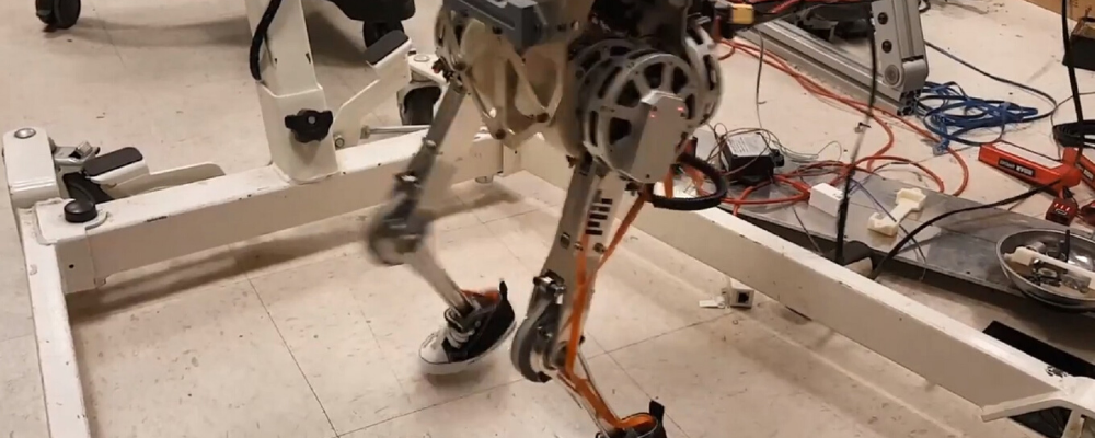 Robot capable of human balance